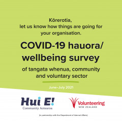 Hauora / Wellbeing Survey